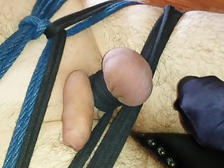 Pinzas Japonesas