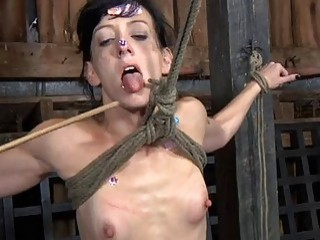 Tormented Villein Is Giving Master A Lusty Blowjob