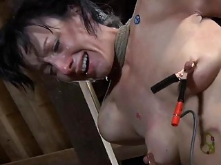 Tied Up Serf Receives Pleasuring Her Wicked Twat