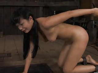 Babes Ravishing Teats Receives Painful Torturing